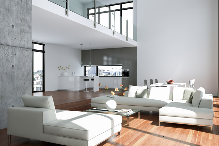 Offene Wohnung - Wohnküche, Schlafzimmer und Bad ohne Wände